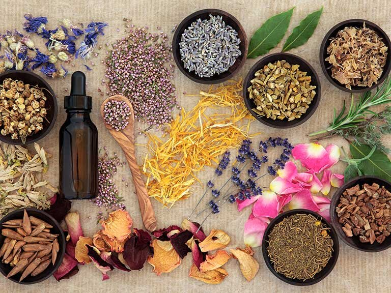 The Move Toward Plant Medicine and Herbs